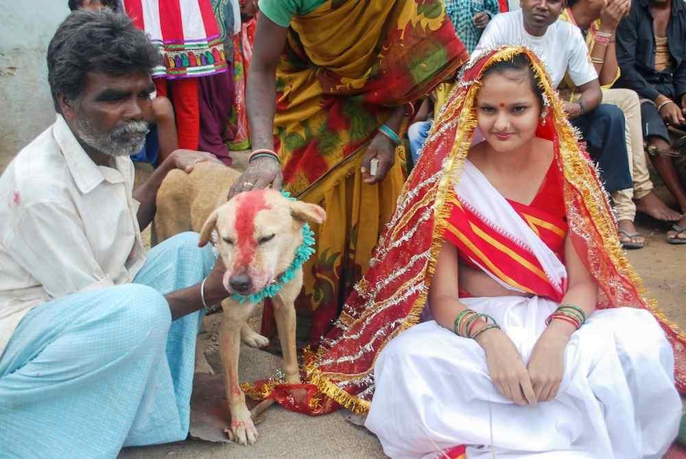 Wanita Menikahi Anjing