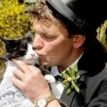 manusia menikahi kucing