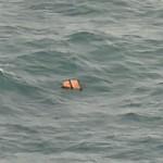 Air Asia Ditemukan, 40 Korban Telah Dievakuasi
