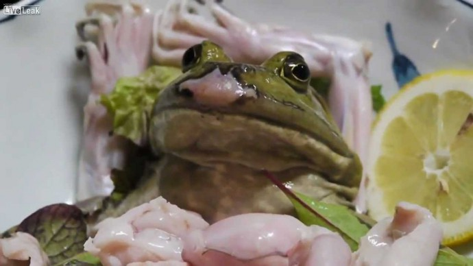 sashimi (youtube)