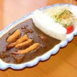 Dam Curry Rice 3 (c) boredpanda