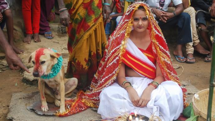 Wanita Menikah Dengan Anjing (c) youtube