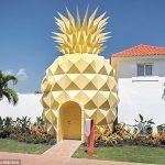 rumah nanas spongebob